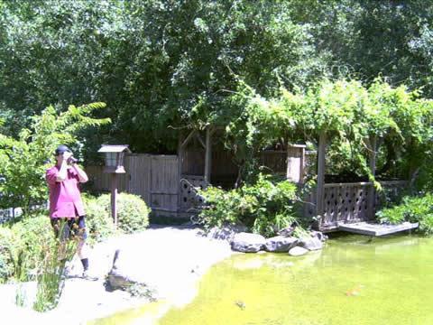 箱根庭園3