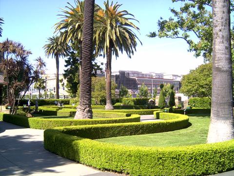 正面の庭2